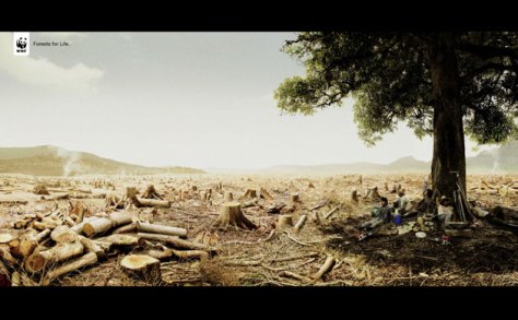 Adverts-for-the-environme-005