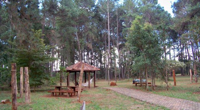 Acadêmicos de Gestão Ambiental visitam o Jardim Botânico de Brasília