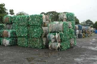 reciclagem-pet-verde-capital