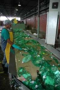 reciclagem-pet-verde-capital4