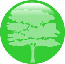 Verde_Capital