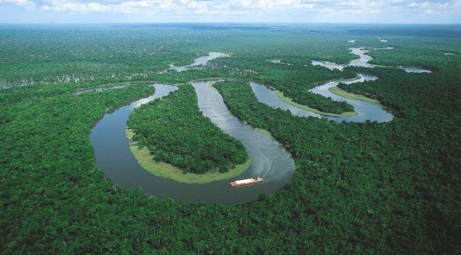 Profissões do Futuro: Área ambiental tem três carreiras promissoras